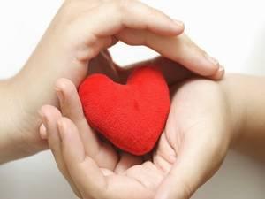 Purple heart in gentle hands
